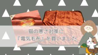 山善の電気敷毛布