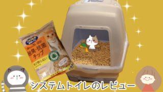 猫のシステムトイレの画像