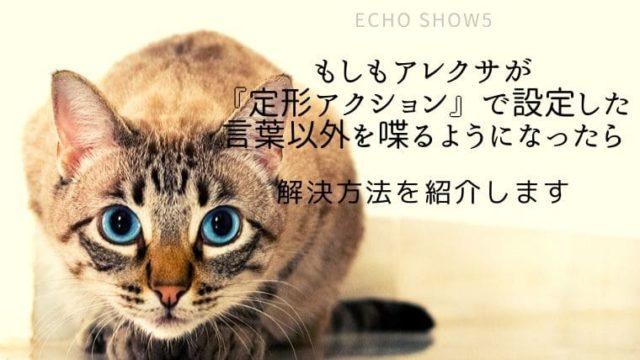 Echo Show5|定型アクションで指定した言葉以外を喋るようになった時の対処方法を紹介します